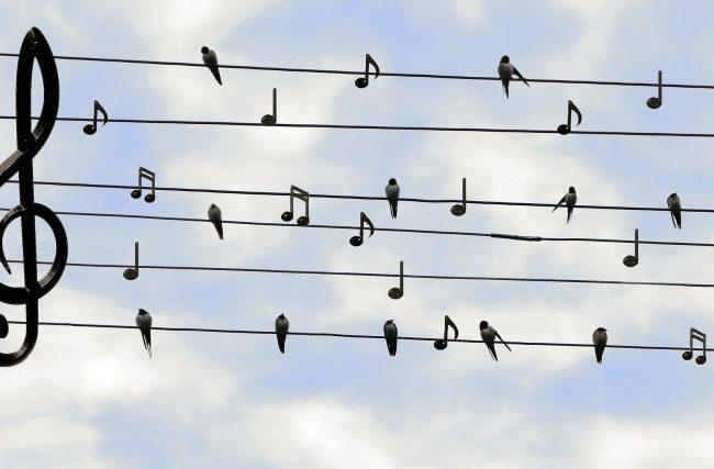 Música: Arte Criada por Deus