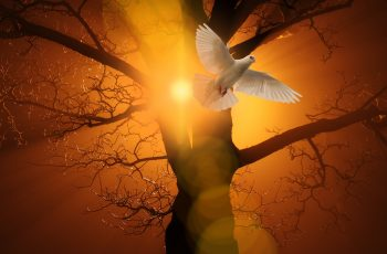 Versículos bíblicos de força espiritual