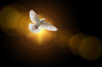 Versículos bíblicos sobre o fruto do Espírito